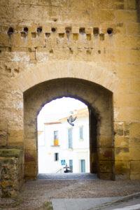 Carmona, la ciudad antigua.
