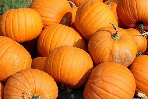 La calabaza es el alimento estrella del otoño.